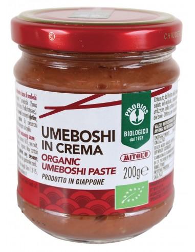 CREMA DI UMEBOSHI 200G